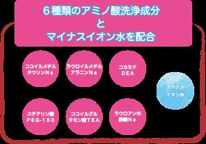 シャンプ−10−1