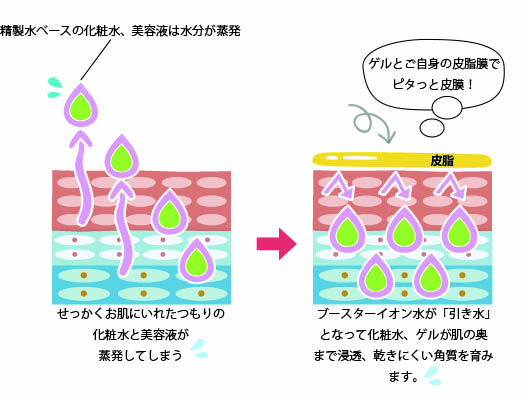 精製水ベースの化粧水は水分が蒸発してしまう